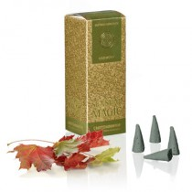"Incense Cones ""Harmony"""